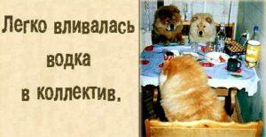 Одностишия Леонида Либкинда