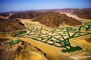 Сельскохозяйственные проекты в пустыне