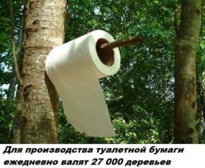 Для производства туалетной бумаги необходимо 27000 деревьев ежедневно