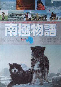 Две собаки выжили в Антарктиде — их нашли живыми через год